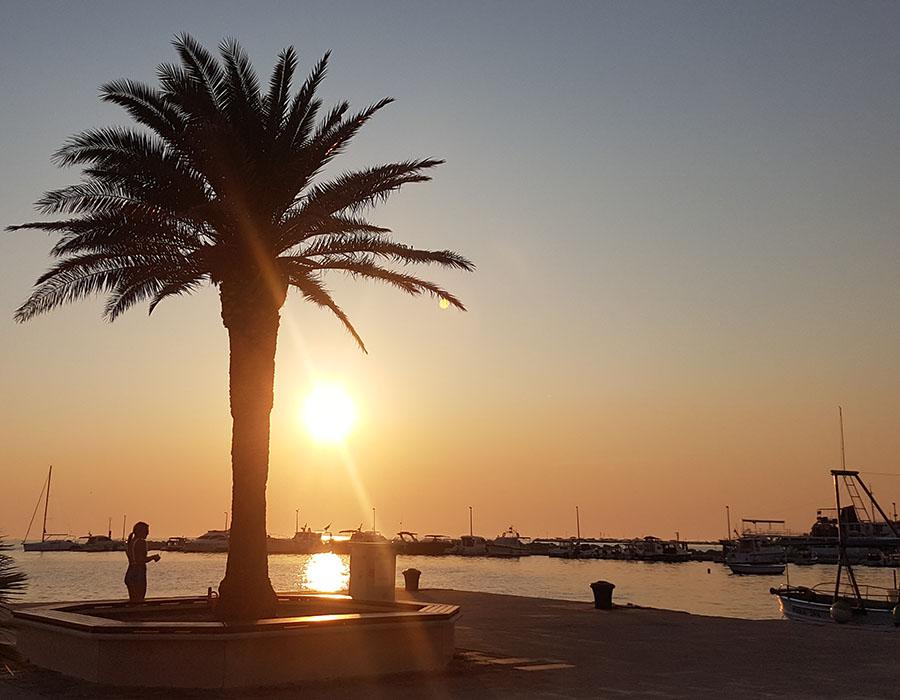 Jugendreisen Novalja Kroatien Informationen Sonnenuntergang mit Palmae