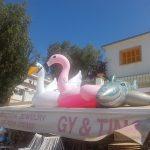 Partyurlaub im September Mallorca Strand Trip Verkauf