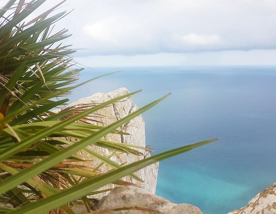 Partyurlaub im September Mallorca Aussicht Roadtrip Klippe