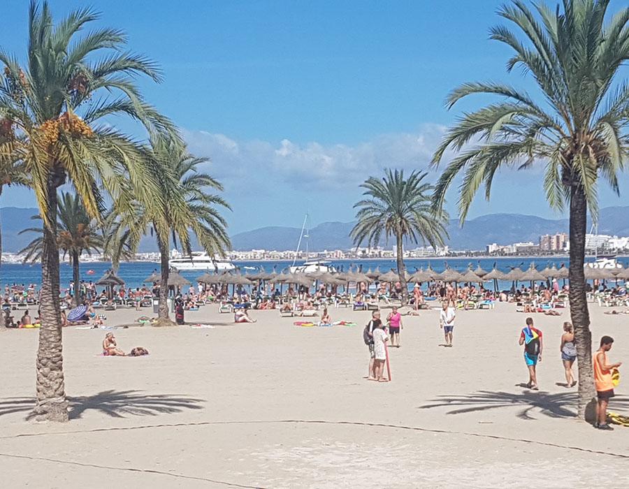 Partyurlaub im September Mallorca Bild