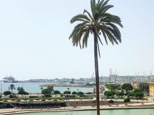 Palma Mallorca Innenstadt